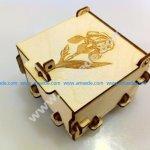 Pinned Box