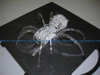 spiderasaur