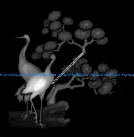 3d Grayscale Image Birds BMP
