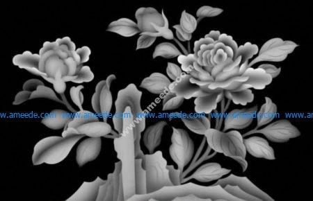 picture of tea tree flowers