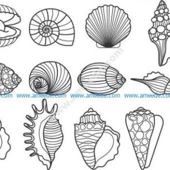 shells vector set