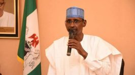Chinese company polluting water supply in FCT has no lease to mine gold - Minister