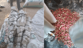 Customs Federal Operation Unit, Zone B uncovers Locally Made Guns, Hundreds Of Cartridges