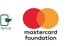 60,000 farmers empowered to boost Ginger production in Nigeria through the Agrolog and Mastercard Foundation partnership
