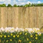 Clôtures Naturelles en Roseau FenduClôture Naturelle en Roseau Fendu