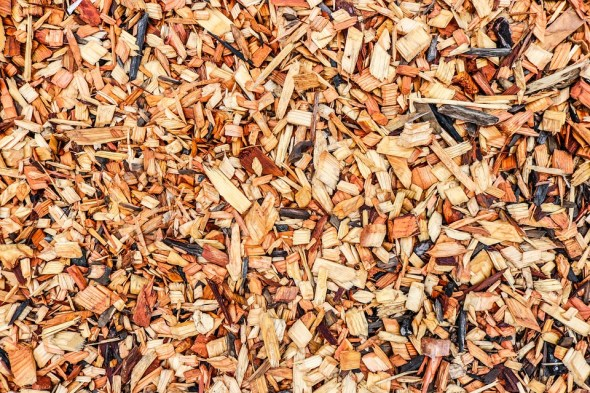 branchage brindille compost