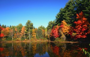 Natur-new-hampshire
