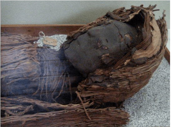 7000 year old mummy