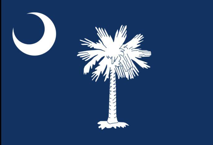 State Flag of South Carolina
