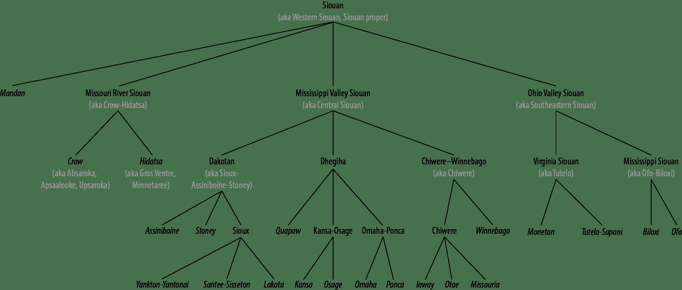 Siouan Language Family Tree