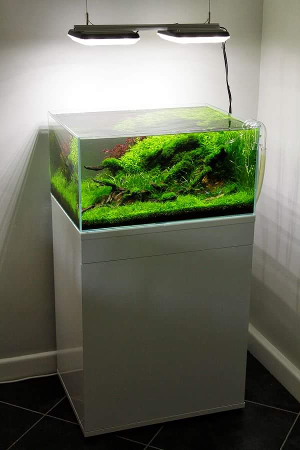Led Aquarium Lighting Planted Tank
