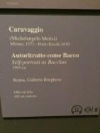 tja-caravaggio-guercino-flesh54