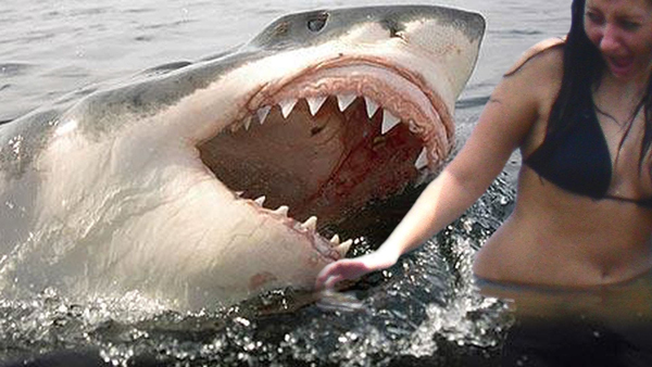 Selfies are deadlier than shark attacks in 2015