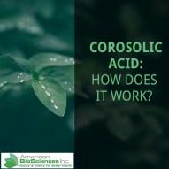 Corosolic Acid: How does it Work?