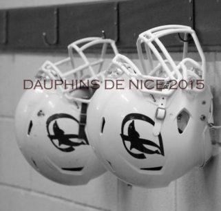 Nice Dauphins 2015