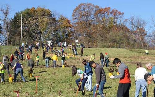 Pittsburgh tree planting