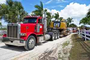 flatbed hauling cat