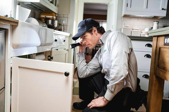 home inspector inspecting cabinet | American Home Services | Pests are hiding in your home Orlando
