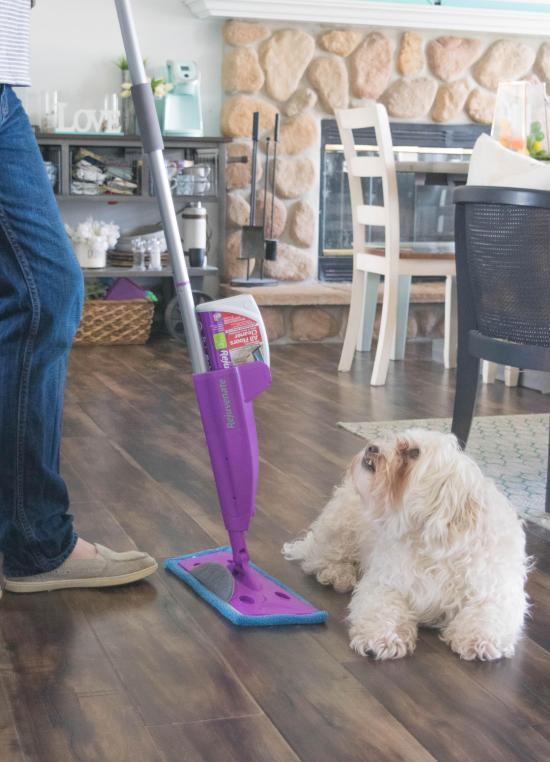 mapping the floor and a dog | American Home Services | floor cleaning Orlando