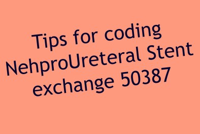 CPT code for Nephroureteral stent Exchange