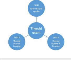 coding tips for thyroid imaging and Uptake