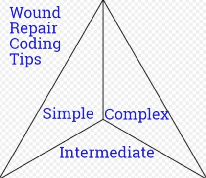 Amazing Coding guide for Wound/Laceration Repair CPT Codes