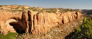 799px-Navajo_National_Monument_Tsegi_Canyon_Betatakin_Dwelling_28-09-2012_9-38-03