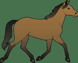 horse-48394_960_720