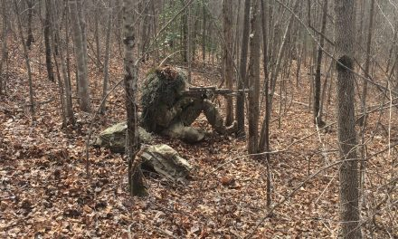 Practical Carbine Accuracy: Off the Bench and In the Field
