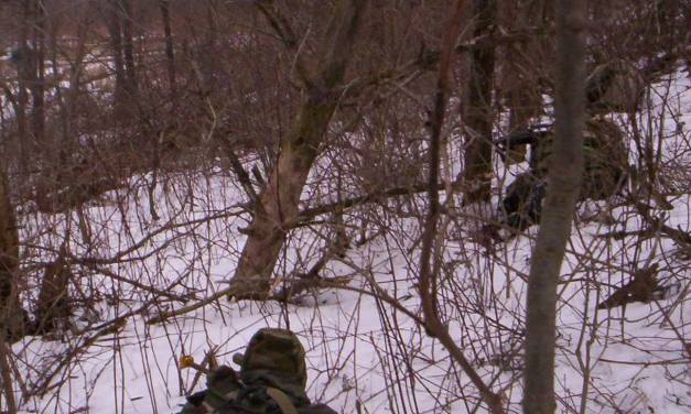 Common Infantry Tasks Testing-The Level 2/3/4 Requirements Applied To Survivalists