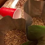 Storing pinto beans, long term.