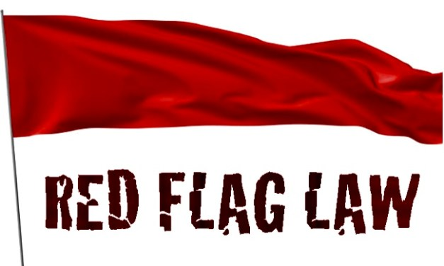 "Are the new ""Red Flag"" laws the gun grab we've been warned about?"