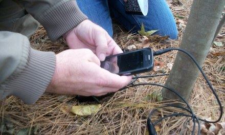 Practical Notes on FLDigi Over Handheld Radios, Part 2