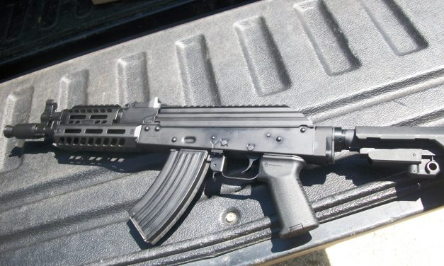 PSA AK-P: First Shots, First Thoughts