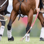 You may have seen our other information on the sport of polocrosse, what the rules are and even where our clubs are…..but how do you actually learn to play?