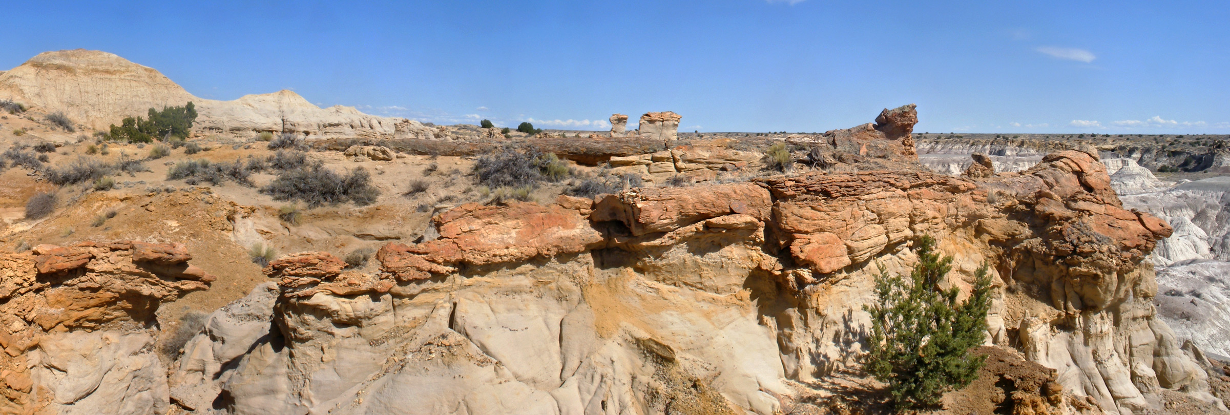 Click for a larger view -- see the petrified trees, darker brown and lying horizontal? American Southwest posted this on Facebook.