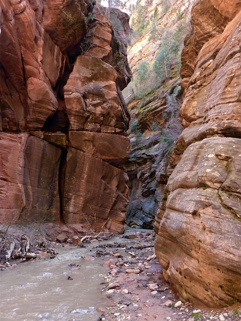 Narrow Channel Beartrap Canyon Utah