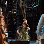 """Garrett Long, Lisa Brescia and Jeffrey Meanza in """"Into the Woods"""" at PlayMakers Rep in Chapel Hill, N.C. (Photo by Jenny Graham)"""