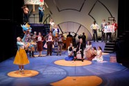 """Bye Bye Birdie,"" by Michael Stewart, Lee Adams, and Charles Strouse, at PlayMakers Repertory Company in Chapel Hill, N.C., through July 30."