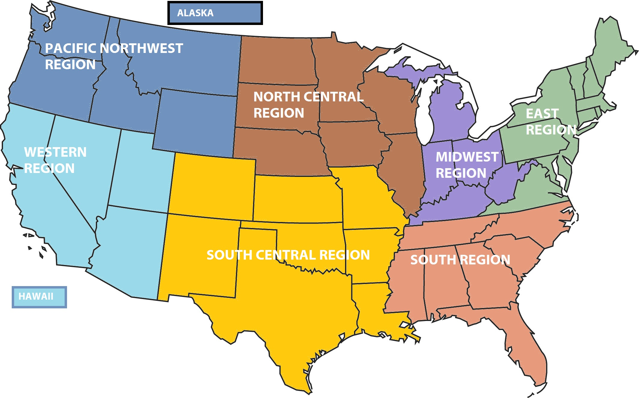 Show Chairs And Regions