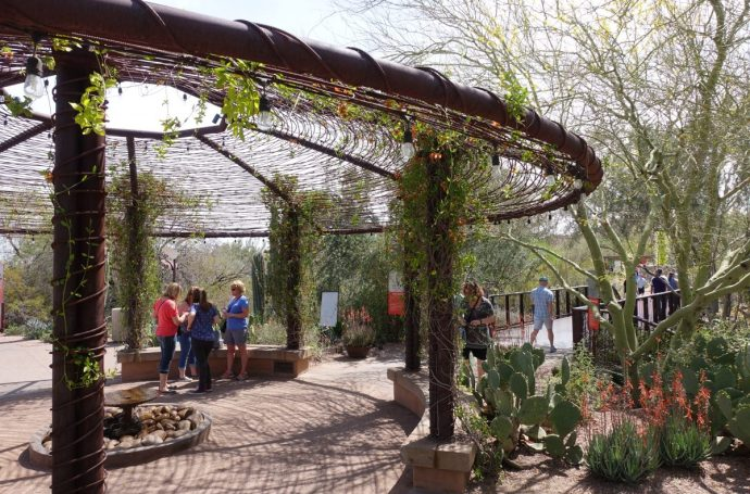 Desert Botanical Garden Entrance