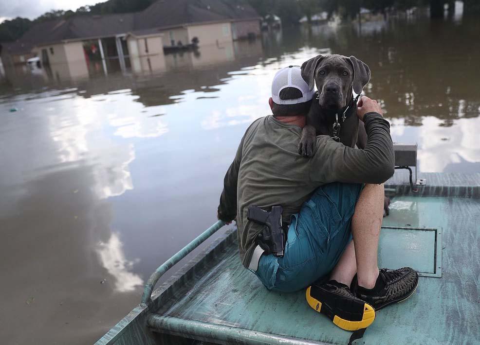 https://i2.wp.com/www.amerika.org/wp-content/uploads/houston_hurricane_harvey_flood_evacuation.jpg