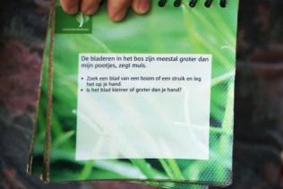 Een groene opdracht