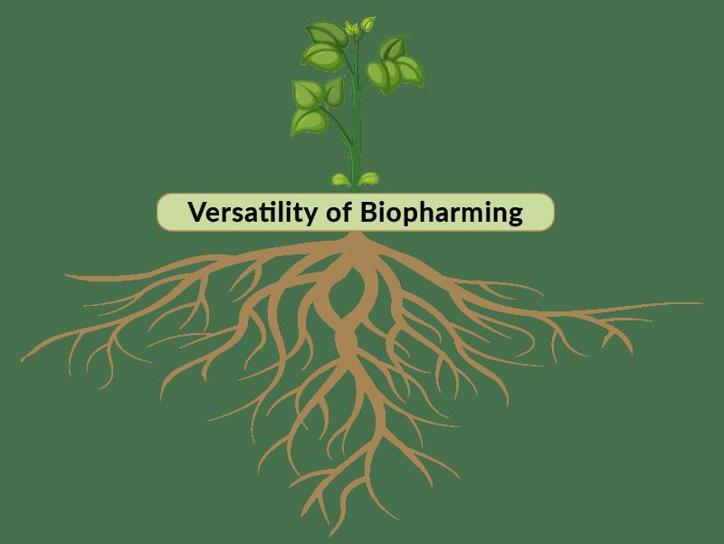 amerstem-Versatility-of-Biopharming
