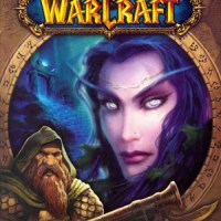 GAME OVER: JOURNEY FROM ADOLESCENCE TO ADULTHOOD WITH 'WORLD OF WARCRAFT'
