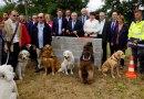 École de chiens d'aveugles de Cernay : vers un nouvel écrin…