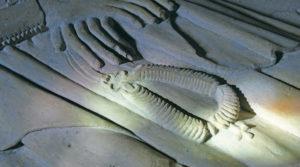 chapelet - Le chapelet d'Anne de Wattwiller