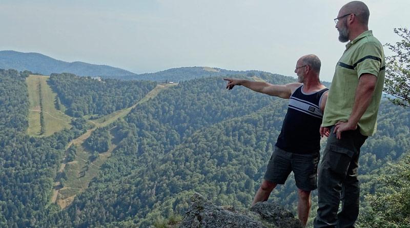 Forêt: l'épidémie silencieuse