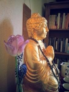 tulip and buddha