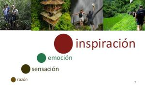 Dinámica y tendencias de las marcas ecoturísticas
